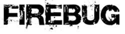 Firebug logo 1
