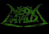 Band Logo for NEON HALO